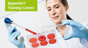 Cell Culture Basics training